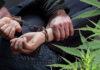 В Серпухове задержали наркоторговцев
