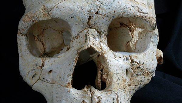 Череп и кости нашли в гостинице Москвы
