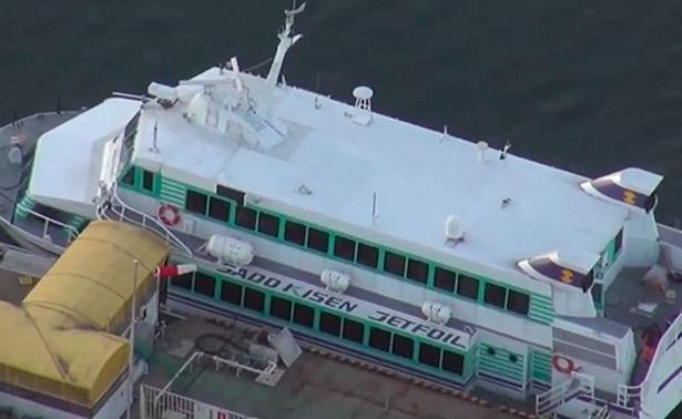 Произошло столкновение катера и кита остров Садо
