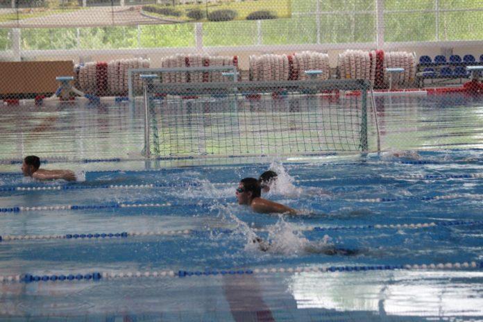 Открытое первенство по плаванию в г.о. Чехов