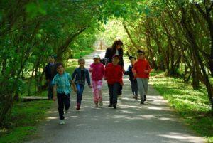 познавательная прогулка 25 зелёных дней в Мелихово