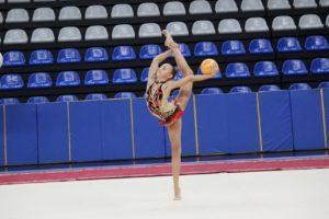 Соревнования по художественной гимнастике 2003-2013г.р.