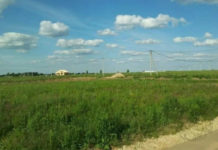 ДеревняАлфёровоЧеховского района