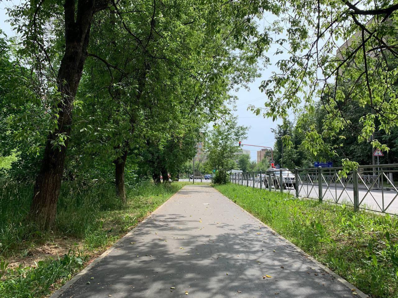 Новые тротуары улучшили подходы к главным соцобъектам во Фрязине   Изображение 1