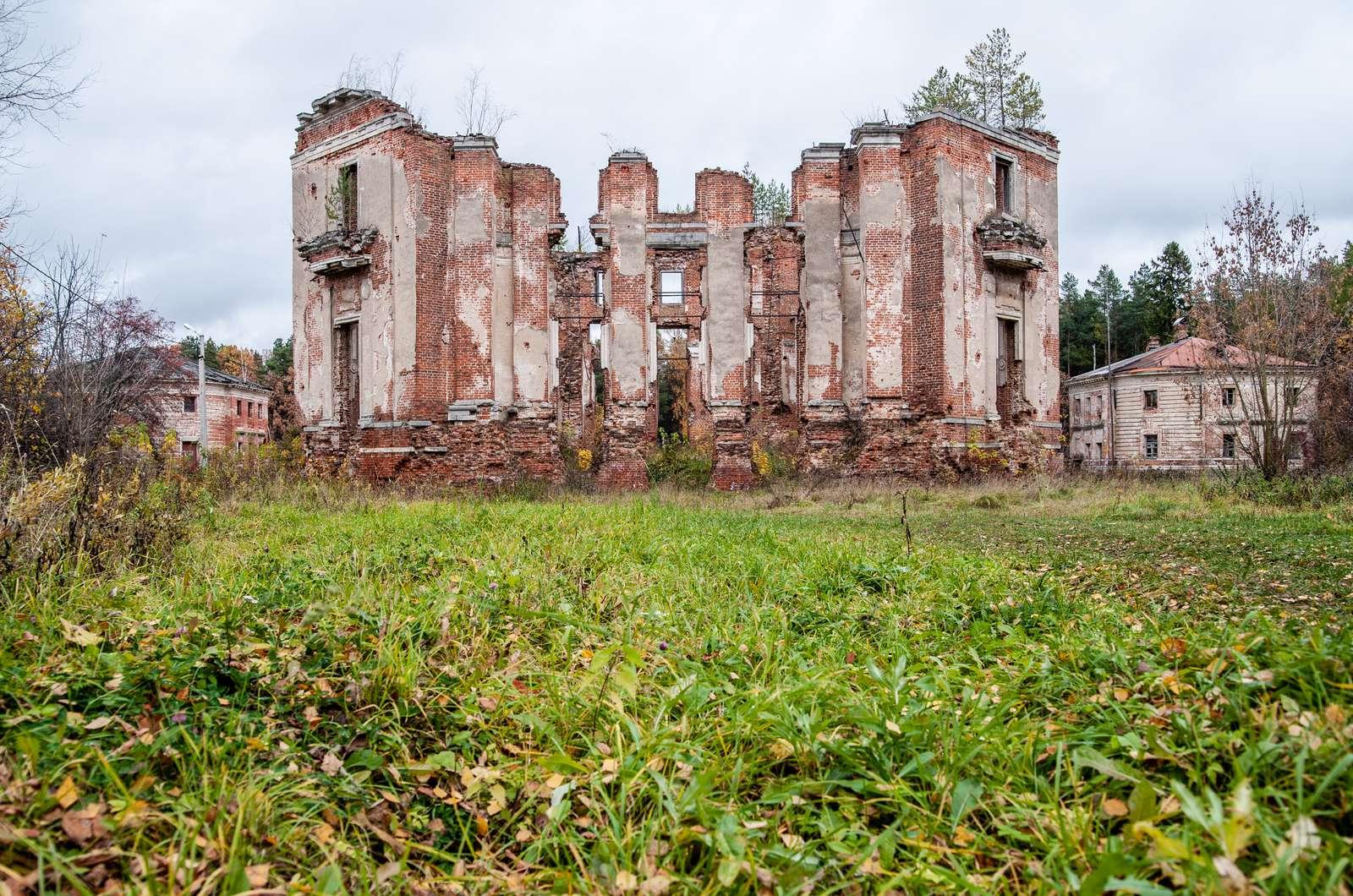 Руины с величественной историей. Где найти лучшие заброшенные усадьбы в Подмосковье | Изображение 1