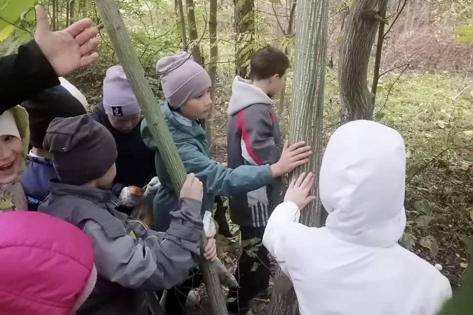 Дендропарк в Ивантеевке посетили около 300 детей в сентябре   Изображение 1