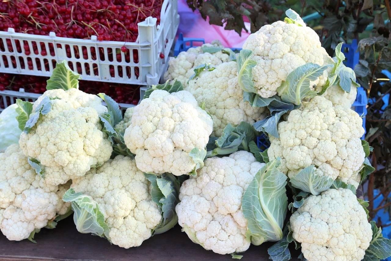 Гости ярмарок «Дары Подмосковья» смогут купить свежие овощи, фрукты и ягоды | Изображение 2
