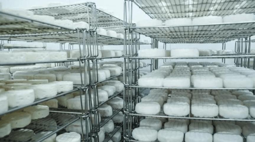 Семейное дело. Сыроварня «Де фамиль» запустила крупное производство в Чехове