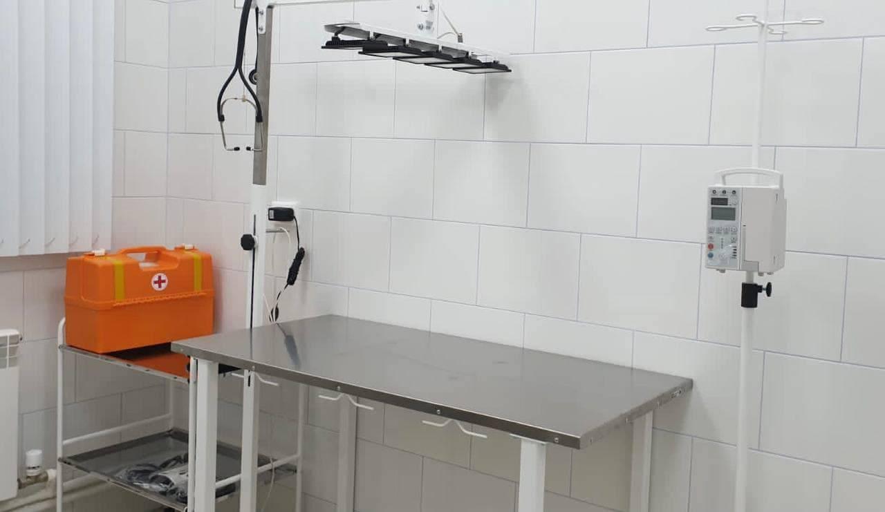 Современная техника и новая мебель появились на ветеринарной станции Люберец после ремонта | Изображение 2
