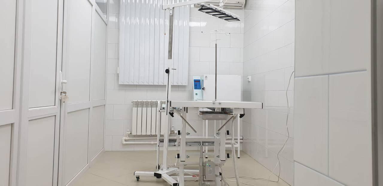 Современная техника и новая мебель появились на ветеринарной станции Люберец после ремонта | Изображение 3