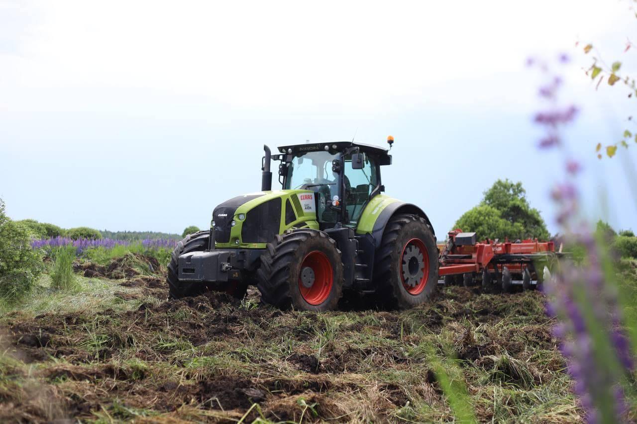 Еще 25 тысяч гектаров земель отдали под сельское хозяйство в Подмосковье | Изображение 1