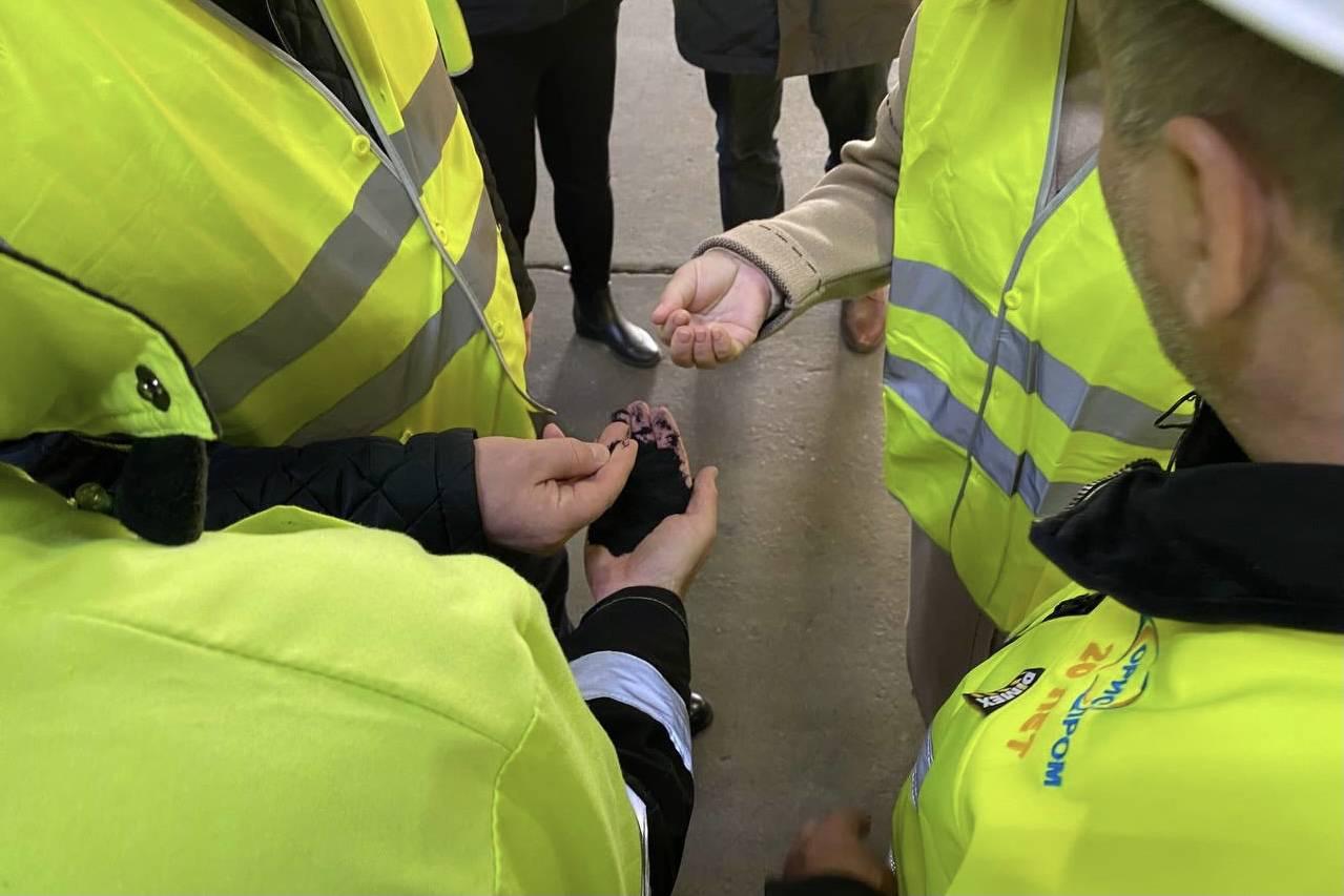 Министр ЖКХ Подмосковья Велиховский рассказал об уникальности комплексов переработки вторсырья   Изображение 2